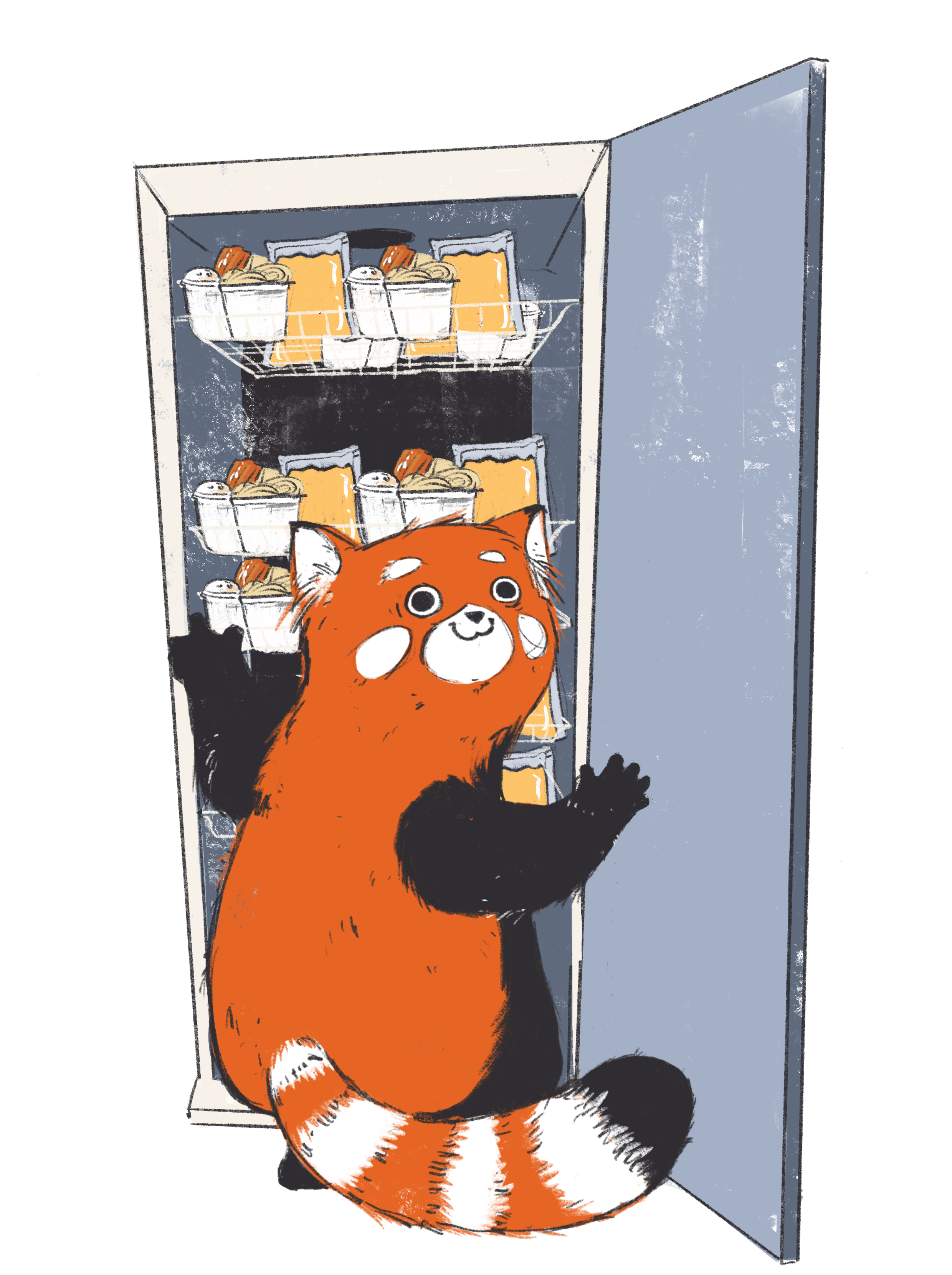 Nudel_Kühlschrank_Panda